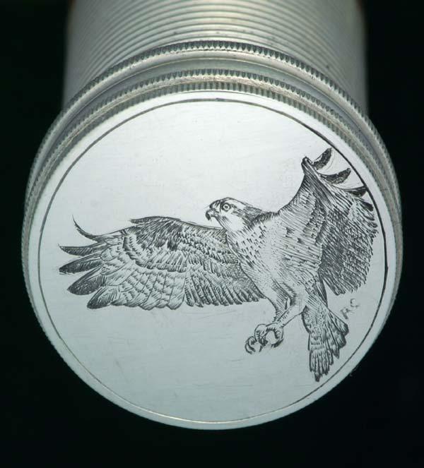 osprey-butt.jpg