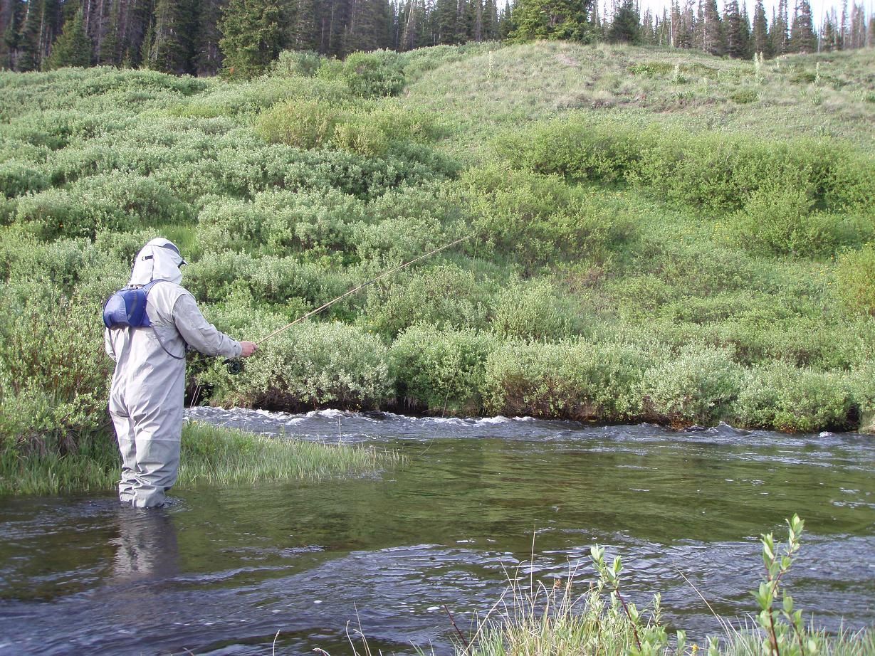 Backcountry fly fishing gear reviews for Backcountry fly fishing
